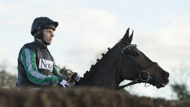 Sneak peek: Altior and Noel Fehily take a look at a fence ahead of the Grade 1 Racing Post Henry VIII Novices' Chase at Sandown