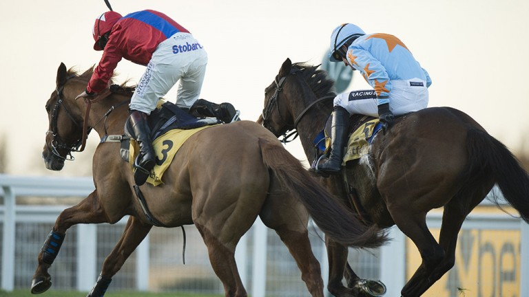 Battling it out: Un De Sceaux (right) and Sire De Grugy enjoy a ding-dong battle up the run-in in the Grade 1 Betfair Tingle Creek Chase at Sandown