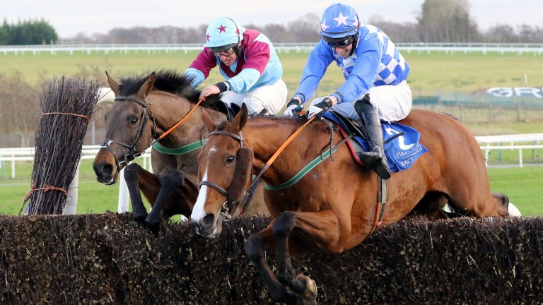 Pairofbrowneyes bids to get a deserved win under his belt at Naas