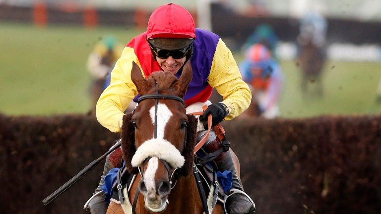 Native River: now a live Cheltenham Gold Cup prospect