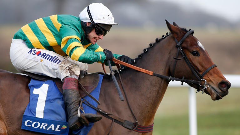 Defi Du Seuil: shares his sire, Voix Du Nord, with another Boudot-bred star in Taquin Du Seuil