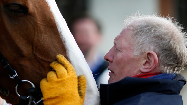 Gary Moore reports Sire De Grugy none the worse for his mishap in the Desert Orchid Chase at Kempton