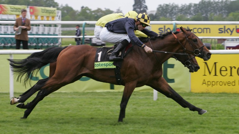 Linda's Lad: won the Group 3 Derby Trial Stakes at Lingfield as a three-year-old