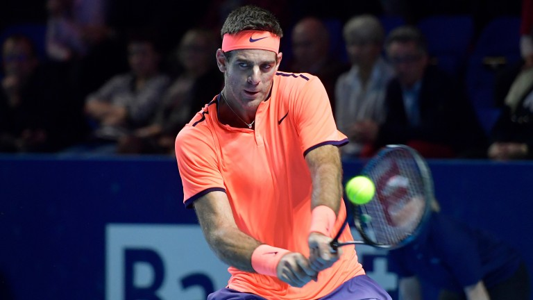 Juan Martin del Potro stayed fit in 2016 and could be a major force this season