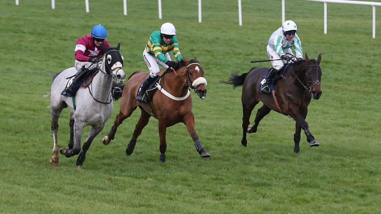 Our Duke (right): comes from third after the last fence to win the Neville Hotels Chase