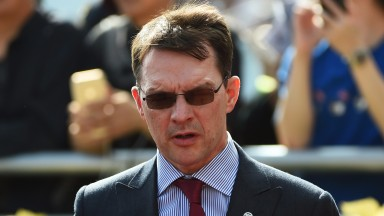 Aidan O'Brien: relies on Deauville, Somehow and Johannes Vermeer in the absence of Minding