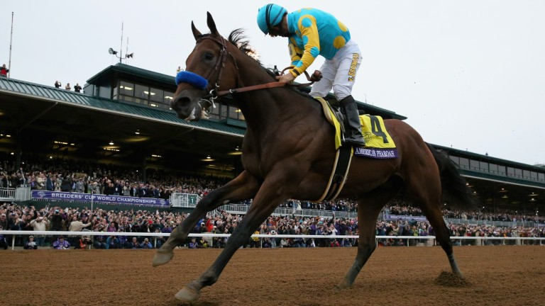 American Pharoah: won the Del Mar Futurity as a two-year-old