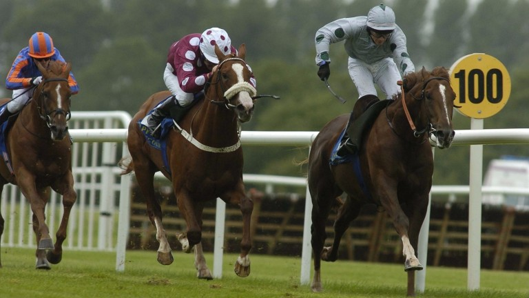 Heatseeker (right) carries the silks of Rick Barnes to win at Tipperary