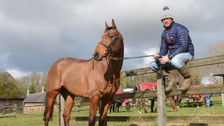 Warren Greatrex can see stable star Cole Harden running a big race at Cheltenham
