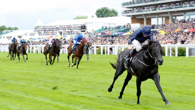 ASCOT, ENGLAND - JUNE 14: Caravaggio ridden by Ryan Moore wins The Coventry Stakes run during Day One of Royal Ascot at Ascot Racecourse on June 14, 2016 in Ascot, England. (Photo by Julian Herbert/Getty Images)