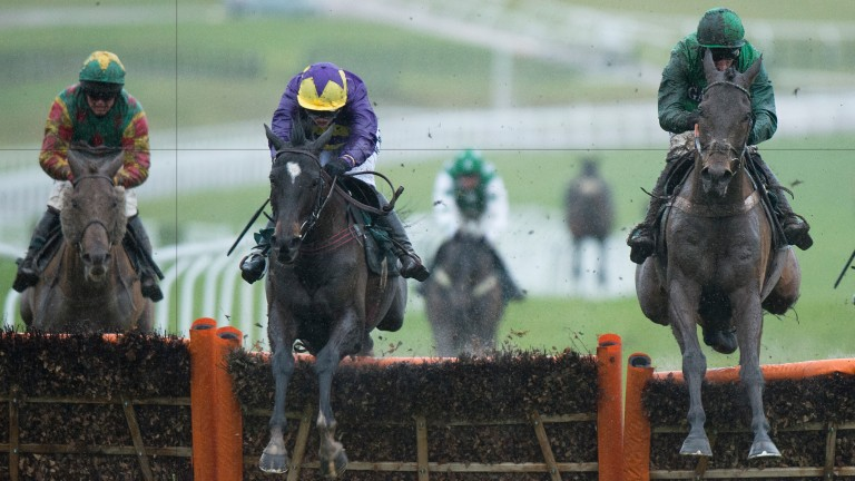 L'Ami Serge (right): boasts plenty of course form at Auteuil and won at Sandown last month