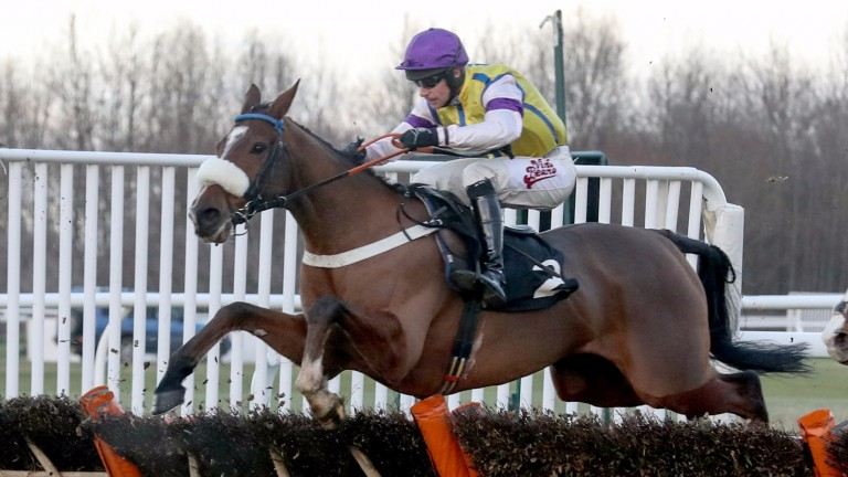 Clondaw Kaempfer: earned over £125,000 in prize money