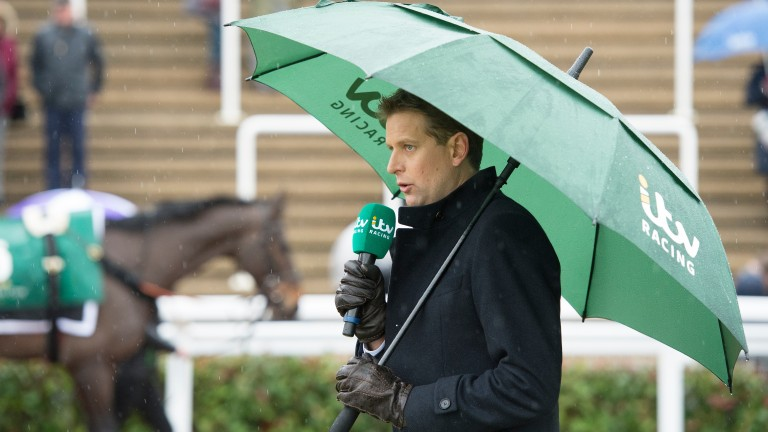 Ed Chamberlin in the parade ring at Cheltenham on Sunday