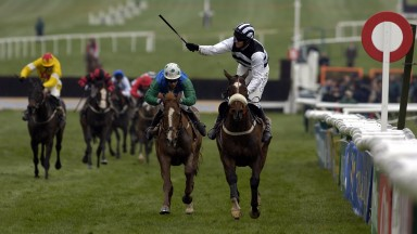 Moscow Flyer and Barry Geraghty win the 2005 Champion Chase