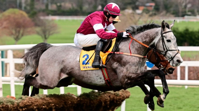 Petit Mouchoir won the Irish Champion Hurdle
