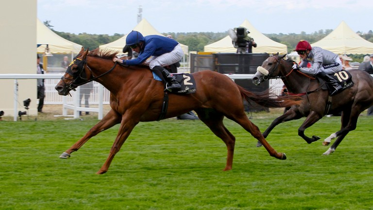Acapulco: impressive winner of the Queen Mary Stakes at Royal Ascot in 2015
