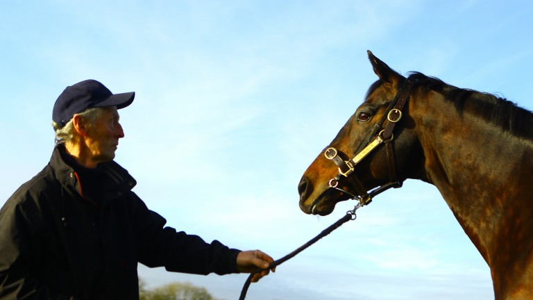 Ronnie O'Neill with Stowaway at Whytemount Stud