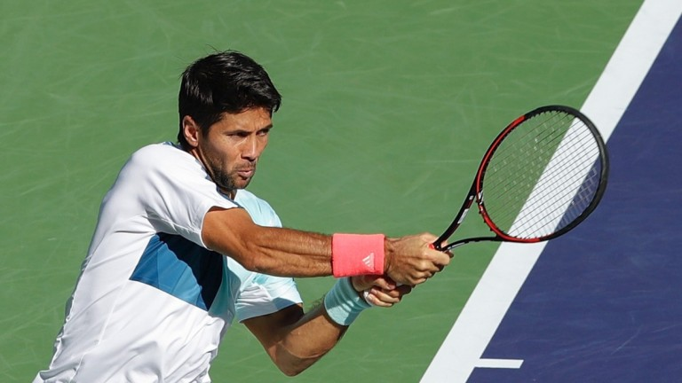 Spain's Femando Verdasco