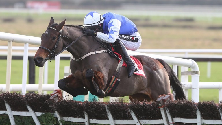Airlie Beach: best-priced 4-1 favourite for the Trull House Stud Mares' Novices' Hurdle
