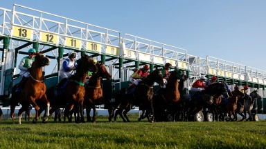 Live racing action from Britain is a popular attraction in Israel