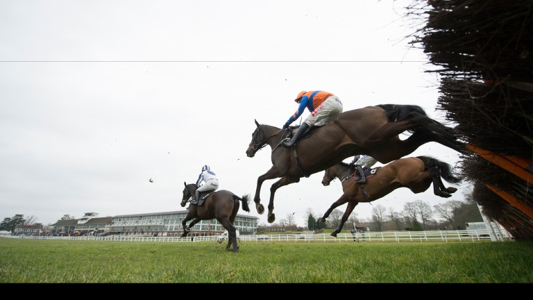 Lingfield: officials anticipate no problems ahead of Tuesday's meeting over jumps