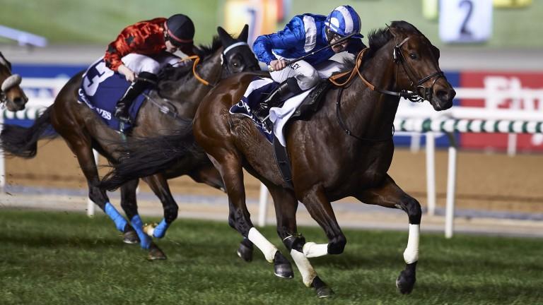 Jim Crowley drives Ertijaal to victory for new boss Sheikh Hamdan Al Maktoum