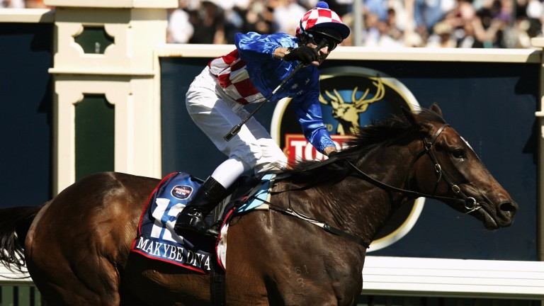 Makybe Diva: earned legendary status with unprecedented Melbourne Cup hat-trick between 2003 and 2005