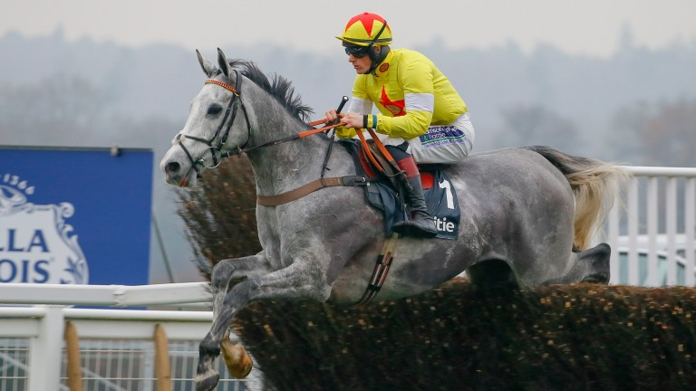 Politologue: faces just one rival in the £20,000 graduation chase at Kempton