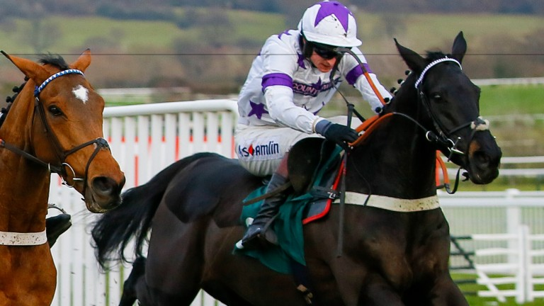 Kapstadt makes quick reappearance after Musselburgh defeat on New Year's Day