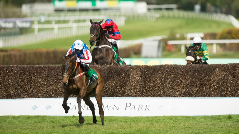 Special Tiara: has been placed in last two Champion Chases