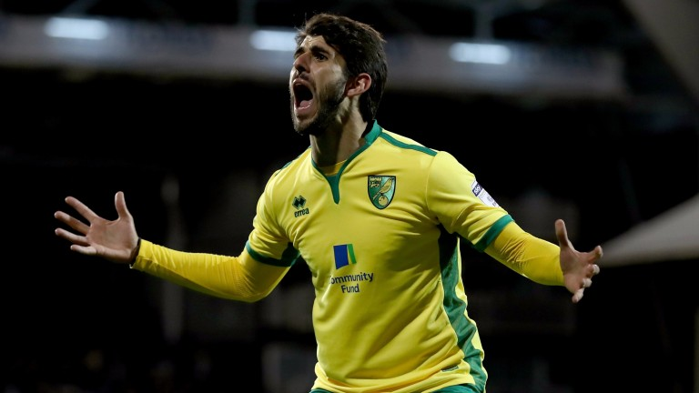 Nelson Oliveira is in great form for Norwich having bagged a hat-trick against rivals Derby