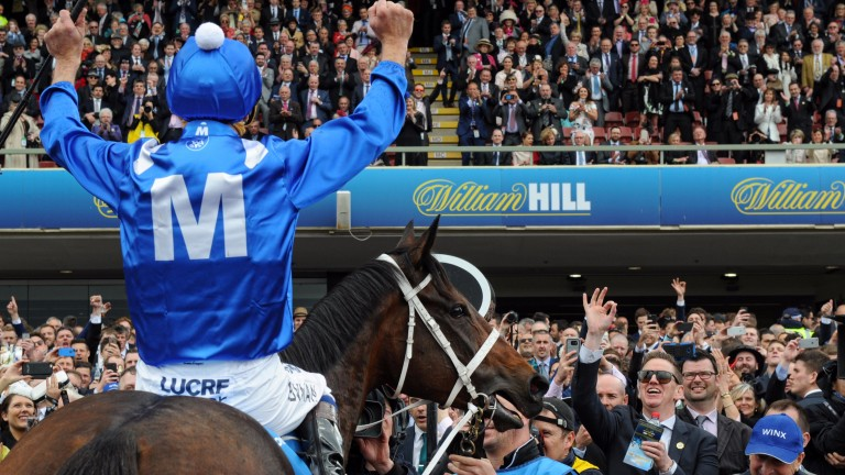 Winx: the world's top-rated horse on turf has captured the hearts of a nation - and beyond