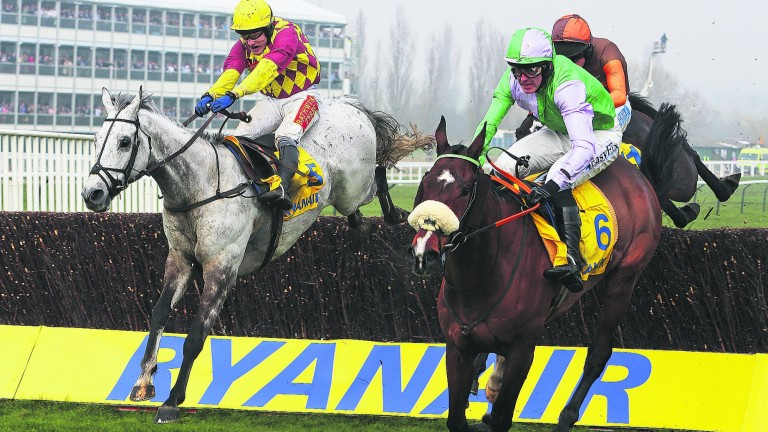 Dynaste (far side) on his way to his most famous victory, in the 2014 Ryanair Chase at Cheltenham