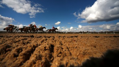 My Renaissance looks set to prove a priceless asset for punters at Wolverhampton