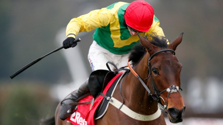 Finian's Oscar: looks to continue a fantastic Punchestown festival for connections