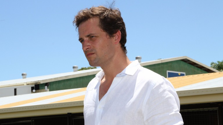"Matt Cumani: ""I'd love to get more Dubawis to race down in Australia"""