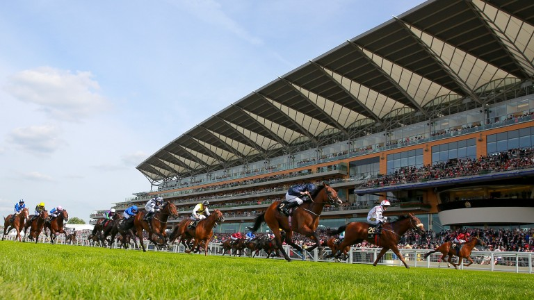 Royal Ascot was one of the best-attended meetings of the year