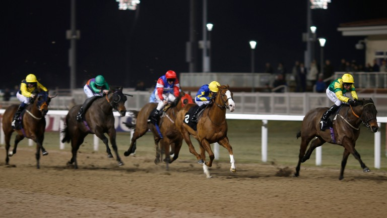All-weather racing under the lights at Chelmsford