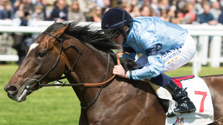 Telescope: wins the 1m4f Listed Al Rayyan Stakes at Newbury