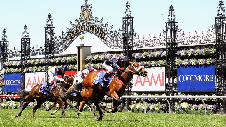 Zoustar claims victory in the Group 1 Coolmore Stud Stakes at Flemington in 2013