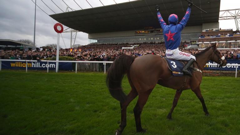"Cue Card: ""All his career he has never run away from anything,"" says owner Jean Bishop"