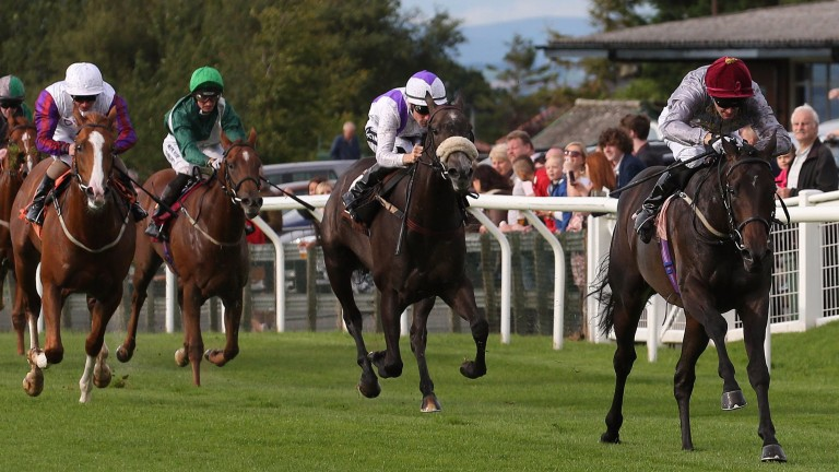 The Richard Fahey-trained Nimr heads to Newcastle for the day's richest prize at 4.30