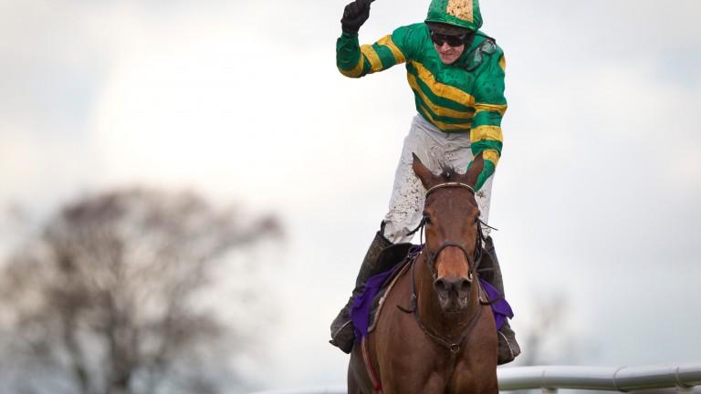 Carlingford Lough will return over hurdles next week at Navan