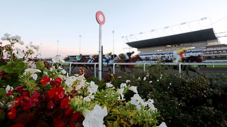 National and local politicians have been speaking out about the Jockey Club proposal to sell Kempton