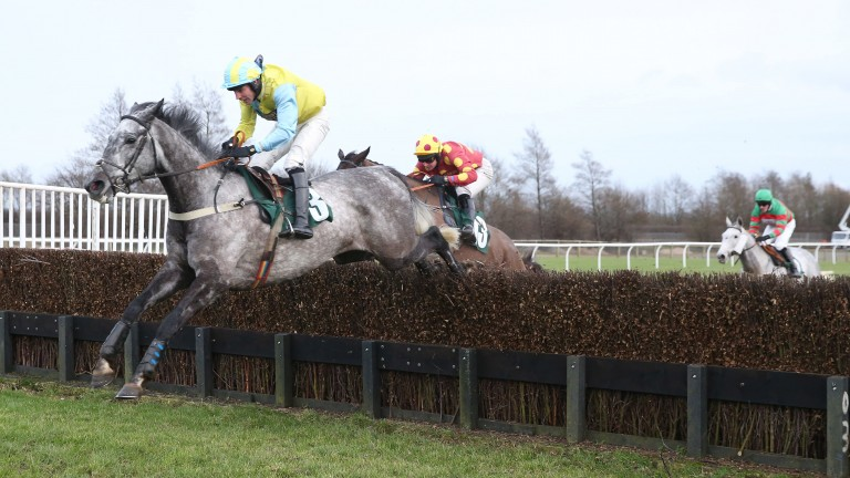Itstimeforapint (red with yellow spots) chases winner Straidnahanna on his way to finishing third last year