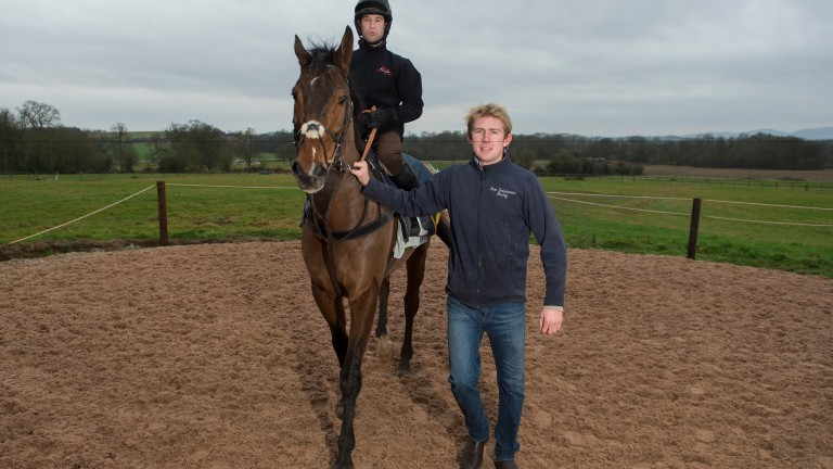 Happier times: Sam Drinkwater at his yard with stable star Tour Des Champs