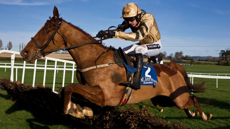 Crack Mome could leap to the forefront of the reckoning for Cheltenham with a win at Punchestown
