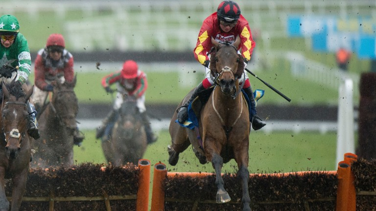 Cogry made a successful return to hurdles under Willy Twiston-Davies at Cheltenham