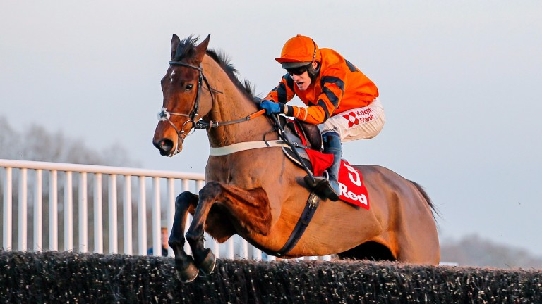 Thistlecrack: will next be assessed at Easter