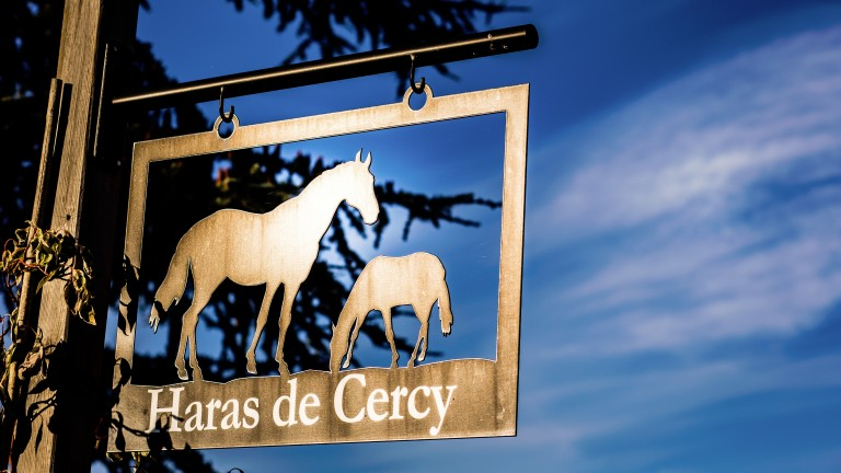 Haras de Cercy: operation was established in 2013